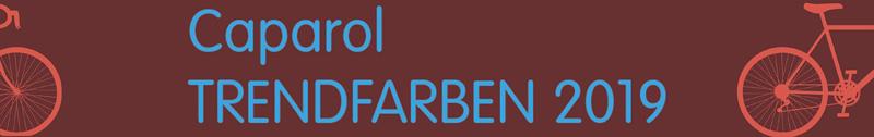 баннер трендовые цвета Caparol 2019